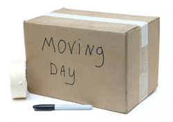 Box labelled 'moving day'