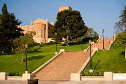 View of steps and grass at UCLA campus